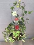 Couture-Sculpture Végétale LW